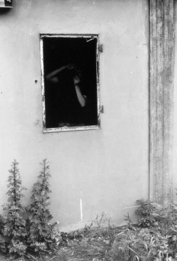 Unbenannt(91)